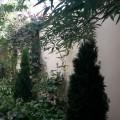 гостевой дом Шевченко 131